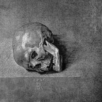 Crâne (1521)