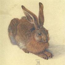 Lièvre (1502)