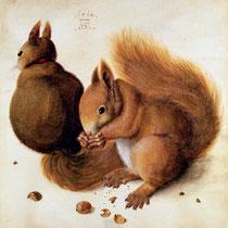 Deux écureuils (1492)