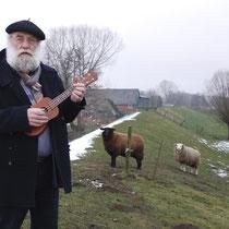 ...ein Ständchen für die Schafe