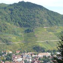 Le Rangen à Thann, début le la Route des Vins