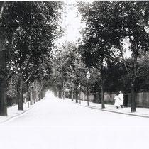 Hills Avenue