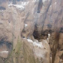 Heimaey - Felsformation mit Seevögeln