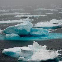 Das Packeis kam von Ostgrönland mit dem Golfstrom an die Südspitze