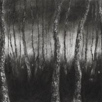 Wandering Souls, 2013, mixed media on paper, cm 70 x 100