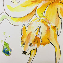 木の実 Wolf  Berry