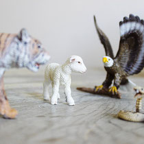 Aufstellung mit Tieren