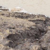 Erosionsrinnen durch ablaufendes Wasser von den Flächen, Aufnahme-Datum: 28.12.2020