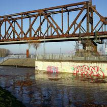Rheinpark Rampe zur unteren Promenade ist zur Hälfte überschwemmt, Ablagerung von Schwemmgut.