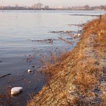 Nach Süden gerichtete Seite der Hafenmauer im Winter,  Aufnahme-Datum: 10.01.2011