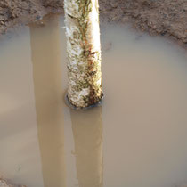 Voll Wasser gelaufene Pflanzgrube, Aufnahme-Datum: 28.12.2020