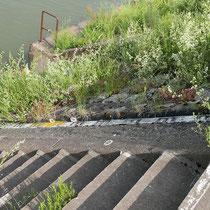 Wasserpegel im Bereich Südhafen Ecke Kultushafen,  Aufnahme-Datum: 01.06.2019