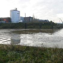Ecksituation Südhafen, Kultushafen mit eintreibendem Schwemmgut.