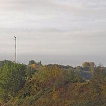 Fünf aufsitzende Kormorane auf Lampenmasten der Molenbeleuchtung des Südhafens,  Aufnahme-Datum: 27.09.2019