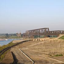 Ausbauphase des Rheinparks, hier: vorbereitende  Vegetationsarbeiten für Einsaaten und Baumpflanzungen. Aufnahme-Datum: 23.09.2007