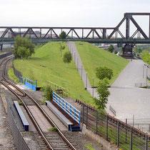 Blick in südliche Richtung über den ehemaligen Nordhafen. Aufwallungen im Rheinpark-Gelände, Aufnahme-Datum: 10.06.2019