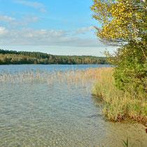 Herbsttag am Krummer See