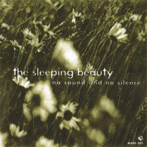 the sleeping beauty no sound and no silence