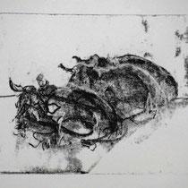 Herde 2,    20x25,     Monotypie, 2014