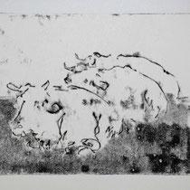 Herde 1,    20x25,     Monotypie, 2014