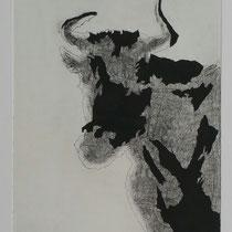 Kuh #2 sw, 36x28, Radierung, 2016