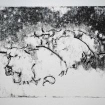 Herde 3,    20x25,     Monotypie, 2014