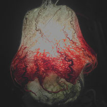 Pilz-Filz-Lampe
