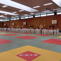 525 qm² Trainingsfläche