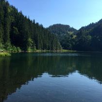 Wanderung Taubensee, schwimmen im Sommer