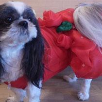 真っ赤なばらのチュチュ風ドレス
