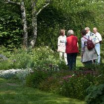 Schaugartentag Juni 2012 - beim weißen Blüten-Staudenbeet bei der Birke