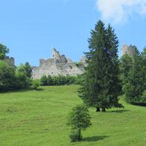 Ruine Freyberg in Zell