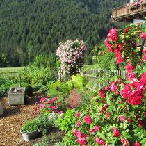 Blick zum Bauerngarten
