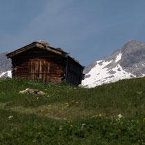 Weg zur Jöchelspitze im Lechtal