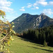 Alpe Bärenmoos in Pfronten