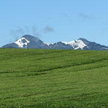 Edelsberg und Alpspitze