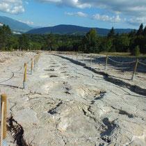 Traces de dinosaures à Plagne dans l'Ain- gite de tres bayard - saint claude - jura