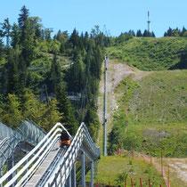 Luge sur rail au col de la Faucille - gite de tres bayard - saint claude - jura