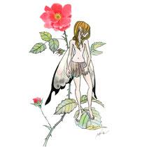 野バラの妖精