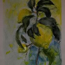 ...limone in limone sul garda