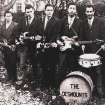 THE DESMOUNTS - Den Haag  Frits Hempelman: sologitaar Steef Biesot: 2e sologitaar/slaggitaar Joey Chong: slaggitaar/vocals tot 1962 (later o.a. in The Incrowd) Sam Rezodihardjo: slaggitaar John Lauterbach: basgitaar Paul van den Berg: drums