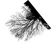 "Grafik ""umgekehrt"" © Nathalie Arun"