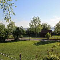 Ausblick vom Vereinsheim auf den Uckersee