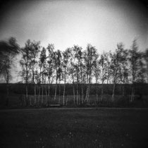 Plain view. | Holga CFN 120 with red filter | Ilford Delta 400 Professional