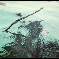 Watching the tide.  | Fujifilm GA645Wi | Lomochrome XR Purple 100-400