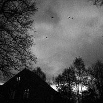 Stare into the night. | Fuji GA645Wi | Delta 3200 expired