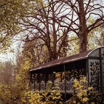Forgotten places. | Kodak Gold 200 taken with Canon 50E