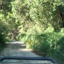le chemin qui mène au bivouac