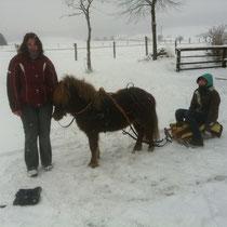 Winter 2010_schlittenfahrt