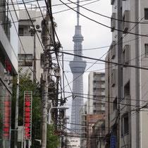 合羽橋道具街から見る東京スカイツリー